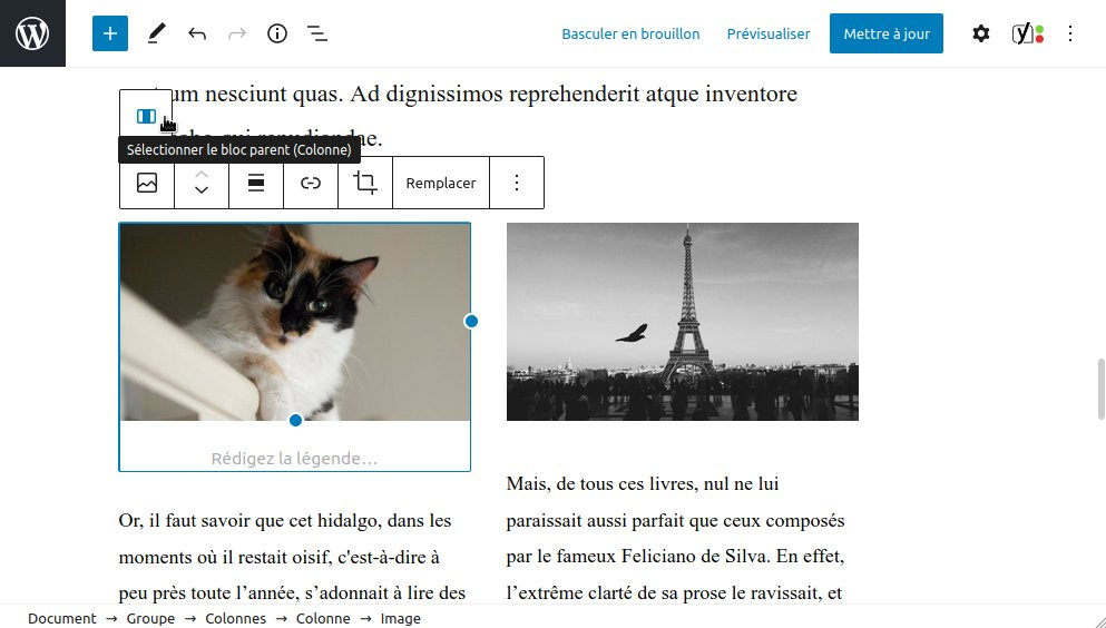 WordPress 5.5 : sélection de blocs parents